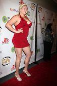 LOS ANGELES - APR 2:  Lindsay Kay Haward at the 2014 Indie Series Awards at El Portal Theater on April 2, 2014 in North Hollywood, CA