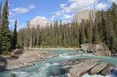 Mountain River - Yoho National Park