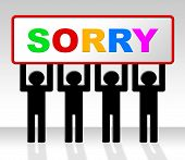Sign Sorry Represents Apology Placard And Apologize