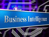 Business Intelligence Represents Intellectual Capacity And Ability