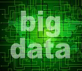 Big Data Indicates World Wide Web And Network