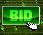 Bid Button Indicates World Wide Web And Auctioning