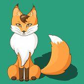 Orange Fox Sitting Isolated On Neutral Background