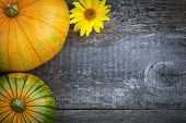 pic of potassium  - Fresh pumpkins decorated sun flower on wooden table top view - JPG