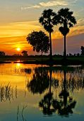 Wonderful Vietnam Rural Sunrise Landscape