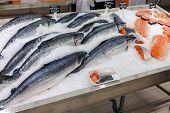 Samara, Russia - September 23, 2014: Raw Fish In Ice Ready For Sale At The Supermarket Magnit. Russi
