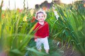 Cute Little Baby Girl Walking In A Field On Flowers On A Farm In Evening Sun Light