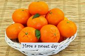 Have a sweet day with basket full of mandarines