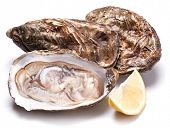 pic of oyster shell  - Raw oyster and lemon isolated on a whte background - JPG