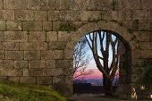 Old Stone Arch Door In A Wall And A Far Tree On Sunset