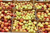 Apples On Shop Counter