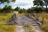picture of old bridge  - Old fashioned wooden bridge in Moremi National Park Botwana - JPG