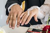 Wedding Rings Newlyweds