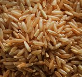 Rice grains on pale close up