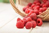 raspberry in a basket on the table in the garden