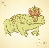 Sketch Fancy Frog In Vintage Style