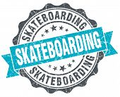 Skateboarding Vintage Turquoise Seal Isolated On White