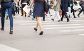 picture of pedestrian crossing  - legs of pedestrians on a pedestrian crossing on spring day - JPG