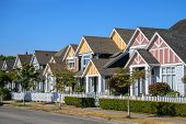 picture of row trees  - A row of a new houses in Richmond British Columbia Canada - JPG