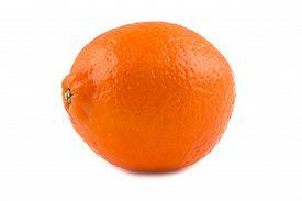foto of tangelo  - Photo of orange ripen minneola on white background - JPG