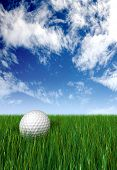 golf ball on grass and blue sky in the background made in 3d