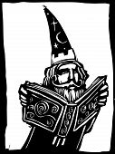 Wizard and Book