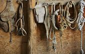 Saddle And Tack
