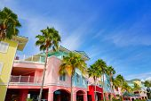 Florida Fort Myers colorful facades and palm trees in USA poster