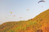 Paragliders Against The Blue Sky. Bright Paragliders Fly In The Sky. Extreme Sport. Extreme. India,  poster