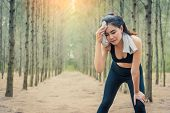 Asian Beauty Woman Wiping The Sweat In Forest. Towel And Sweat Elements. Sport And Healthy Concept.  poster