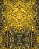 Golden Aspens Cross3