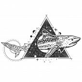 Vector Geometric Shark Tattoo Or T-shirt Print Design. Shark With Polygonal Tail Combined With Night poster