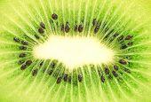 viele Segmente der Kiwi Frucht