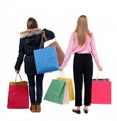 back view of  two women  with shopping bags. backside view of person.  Rear view people collection. poster