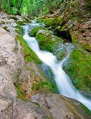 Mountain River Rapids