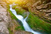 The Picturesque Mountain Forest Stream Flowing Between The Rocks