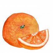 Watercolor Illustration Orange Whole Orange With Orange Slice On White Background poster