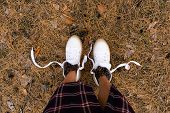 Female Legs In White Boots In The Forest With Cones. Tourism Tourism Concept. Coniferous Forest. poster
