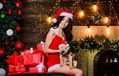 Sensual Girl In Erotic Lingerie. Veterinary Shop. Animals Rights. Puppy Dog. Happy New Year. Merry C poster