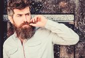 Bearded Man Outdoor. Beard Care And Barbershop. Mature Hipster With Beard. Brutal Male With Perfect  poster