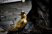 Detail Of Statue, Bronze Pigeon. It Is Said That It Brings Good Luck Caressing It, For This It Is Cl poster