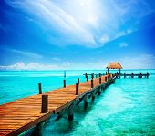 foto of jetties  - Paradise - JPG