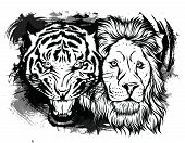 Lion And Tiger Growling Opposite Each Other, Open An Embittered Mouth, Canines, Hand Drawn Doodle, S poster