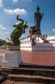 Perhaps The Largest Statue Of A Walking Buddha And An Elephant Standing On Its Hind Legs In Phuttham poster