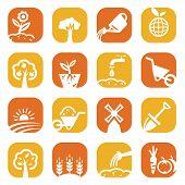 color gardening icon set