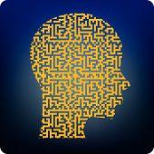 Brainmaze
