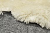 Sheep fur on wool texture