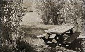 Picnic Table Near Lake