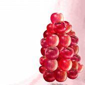 Wedding Red Apple Decoration