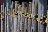 Wooden Fence Tied With Rope